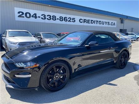 2019 Ford Mustang EcoBoost (Stk: ) in Winnipeg - Image 1 of 31