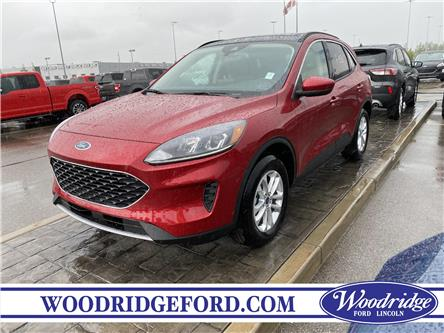 2020 Ford Escape SE (Stk: L-831) in Calgary - Image 1 of 6