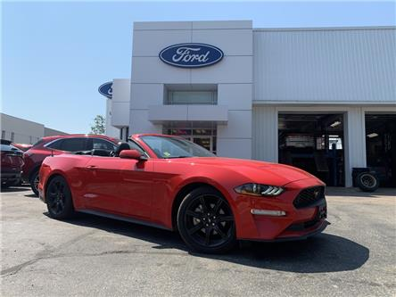 2019 Ford Mustang EcoBoost (Stk: OP2008) in Parry Sound - Image 1 of 19