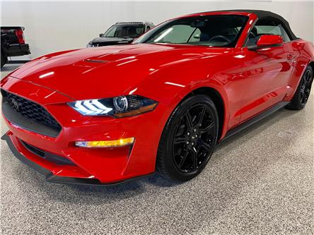 2019 Ford Mustang EcoBoost Premium (Stk: P12391) in Calgary - Image 1 of 20