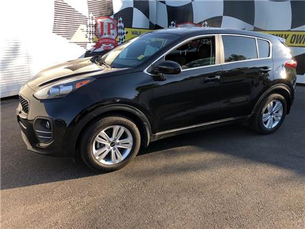 2019 Kia Sportage LX (Stk: 49442) in Burlington - Image 1 of 24
