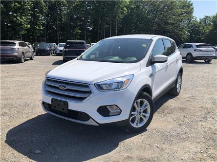 2019 Ford Escape SE (Stk: P9120) in Barrie - Image 1 of 16