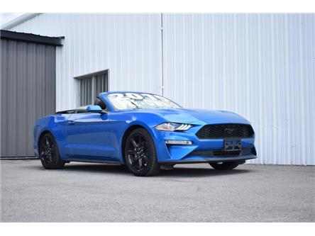2019 Ford Mustang EcoBoost Premium (Stk: UCP1912) in Kingston - Image 1 of 30