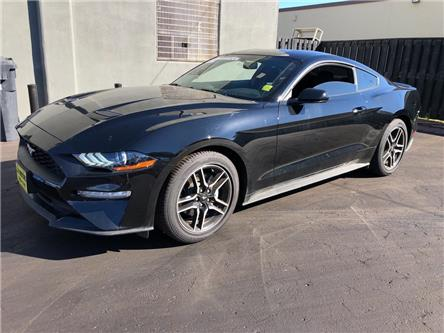2019 Ford Mustang EcoBoost (Stk: 48955) in Burlington - Image 1 of 23