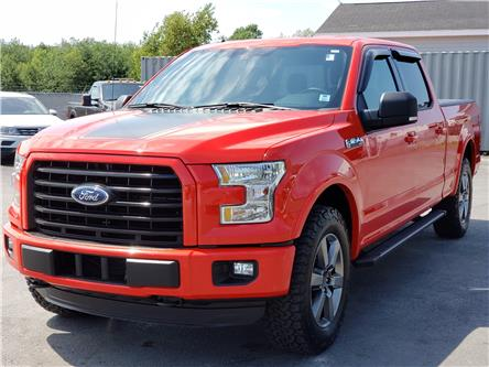 2016 Ford F-150 XLT (Stk: 10808A) in Lower Sackville - Image 1 of 30