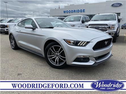 2017 Ford Mustang EcoBoost (Stk: 17544A) in Calgary - Image 1 of 20