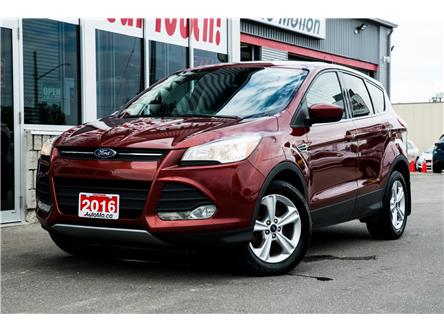 2016 Ford Escape SE (Stk: 20419) in Chatham - Image 1 of 22