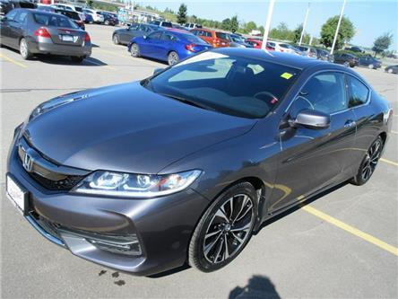 2017 Honda Accord EX (Stk: K16035A) in Ottawa - Image 1 of 20