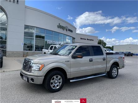2010 Ford F-150  (Stk: N04486A) in Chatham - Image 1 of 20