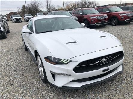 2019 Ford Mustang  (Stk: N91088) in Brampton - Image 1 of 15