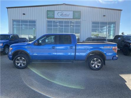 2013 Ford F-150 FX4 (Stk: HW999) in Fort Saskatchewan - Image 1 of 33