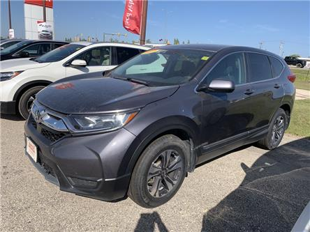 2017 Honda CR-V LX (Stk: H1761) in Steinbach - Image 1 of 17