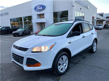 2016 Ford Escape S (Stk: OP20352) in Vancouver - Image 1 of 20