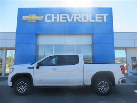 2020 GMC Sierra 1500 AT4 (Stk: 20176 DEMO) in STETTLER - Image 1 of 23