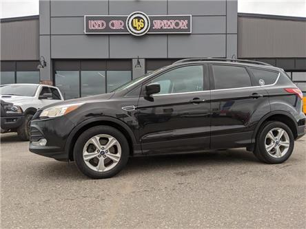 2013 Ford Escape SE (Stk: 3981) in Thunder Bay - Image 1 of 13