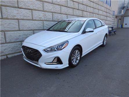 2019 Hyundai Sonata ESSENTIAL (Stk: D01061P) in Fredericton - Image 1 of 17