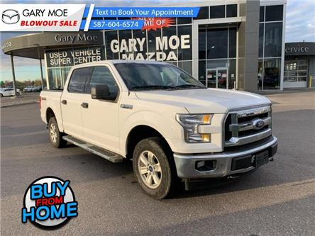 2017 Ford F-150 XLT (Stk: ML0408) in Lethbridge - Image 1 of 8
