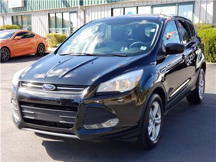 2014 Ford Escape SE (Stk: 10875A) in Lower Sackville - Image 1 of 20