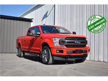 2019 Ford F-150 XLT (Stk: UCP2160) in Kingston - Image 1 of 28