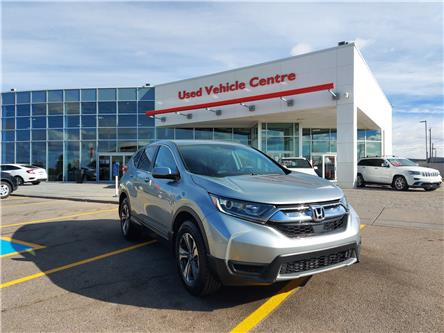 2017 Honda CR-V LX (Stk: 6200932A) in Calgary - Image 1 of 29