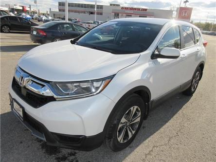 2019 Honda CR-V LX (Stk: K15403A) in Ottawa - Image 1 of 19
