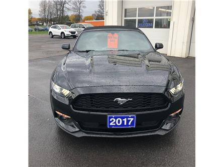 2017 Ford Mustang V6 (Stk: 7925A) in Morrisburg - Image 1 of 8