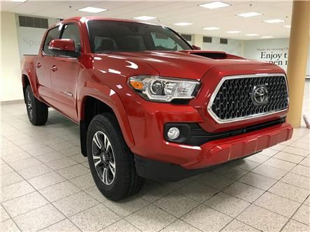2021 Toyota Tacoma  (Stk: 210160) in Calgary - Image 1 of 19