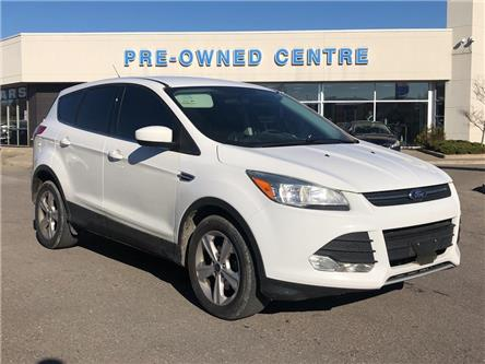 2013 Ford Escape SE (Stk: P01282A) in Brampton - Image 1 of 20
