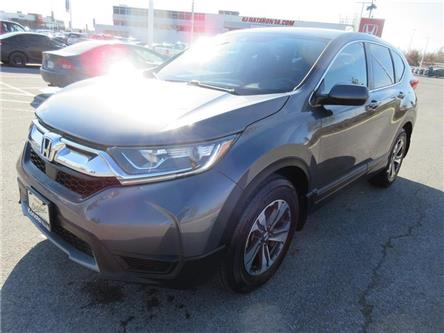 2019 Honda CR-V LX (Stk: K16296A) in Ottawa - Image 1 of 19
