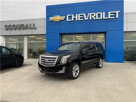 2018 Cadillac Escalade ESV Platinum (Stk: 222355) in Fort MacLeod - Image 1 of 14