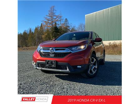 2019 Honda CR-V EX-L (Stk: U01438) in Woodstock - Image 1 of 7