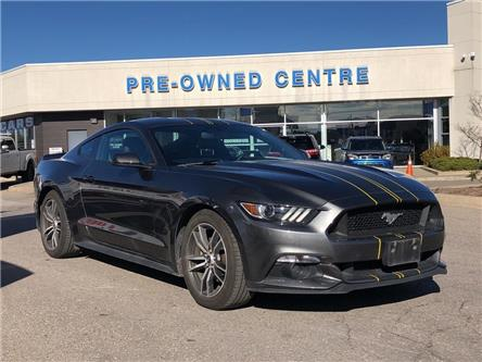 2017 Ford Mustang  (Stk: P01303A) in Brampton - Image 1 of 19