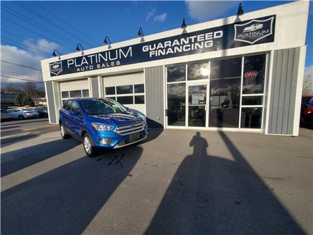 2019 Ford Escape SE (Stk: b38872) in Kingston - Image 1 of 9