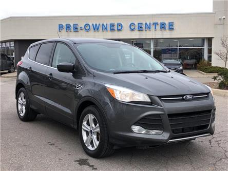 2016 Ford Escape SE (Stk: P01250A) in Brampton - Image 1 of 21