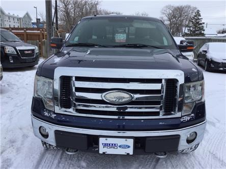 2009 Ford F-150 XLT (Stk: ) in Winnipeg - Image 1 of 16
