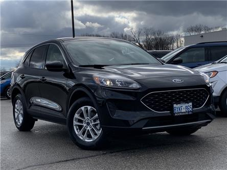 2020 Ford Escape SE (Stk: 20T1121) in Midland - Image 1 of 18