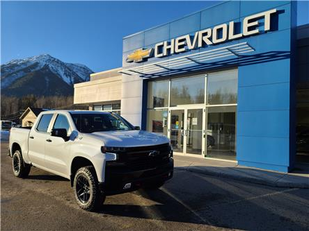 2021 Chevrolet Silverado 1500 LT Trail Boss (Stk: MZ151368) in Fernie - Image 1 of 11