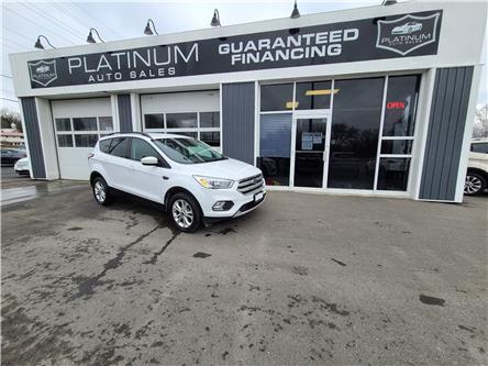 2017 Ford Escape SE (Stk: D00069) in Kingston - Image 1 of 11
