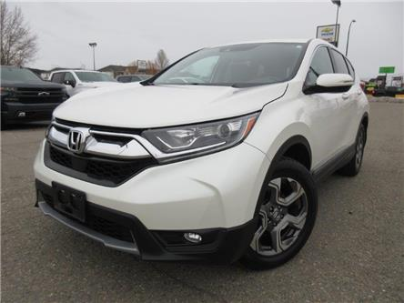 2018 Honda CR-V EX-L (Stk: 00486L) in Cranbrook - Image 1 of 22
