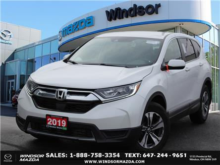 2019 Honda CR-V LX (Stk: PR3532) in Windsor - Image 1 of 24
