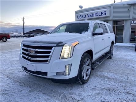 2017 Cadillac Escalade ESV Premium Luxury (Stk: M134A) in Thunder Bay - Image 1 of 22