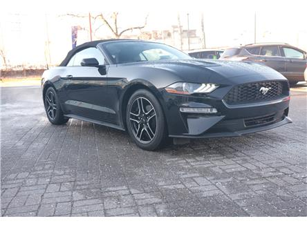2020 Ford Mustang EcoBoost Premium (Stk: 959380) in Ottawa - Image 1 of 19