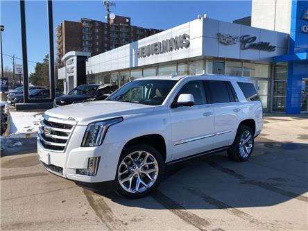 2019 Cadillac Escalade Premium Luxury (Stk: 21007A) in Chatham - Image 1 of 16