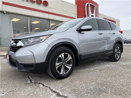 2017 Honda CR-V LX (Stk: SH231) in Simcoe - Image 1 of 23