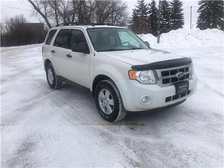 2012 Ford Escape XLT (Stk: 12061.0) in Winnipeg - Image 1 of 18