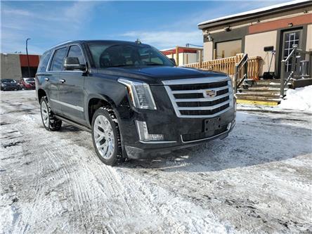 2018 Cadillac Escalade Premium Luxury (Stk: -) in Ottawa - Image 1 of 20