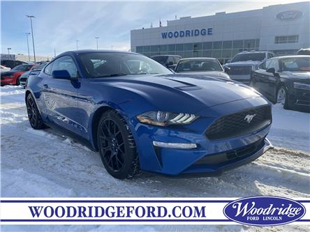 2018 Ford Mustang EcoBoost (Stk: L-40A) in Calgary - Image 1 of 19
