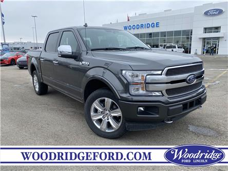 2019 Ford F-150 Platinum (Stk: 17779) in Calgary - Image 1 of 20