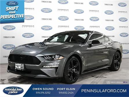 2021 Ford Mustang EcoBoost (Stk: 21MU04) in Owen Sound - Image 1 of 24
