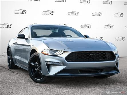 2021 Ford Mustang EcoBoost (Stk: D1G010) in Oakville - Image 1 of 26